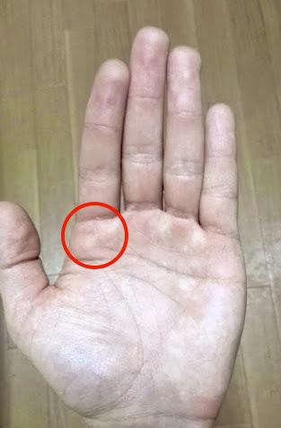 left_finger_fundamental_1_1