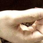 ピックの握り方  #煮詰め方初級